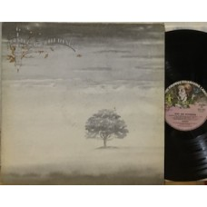 WIND & WUTHERING - 1°st ITALY