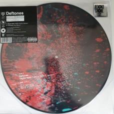 "DIGITAL BATH - 12"" PICTURE DISC"