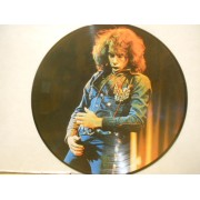 HIS 12 GREATEST HITS - PICTURE DISC