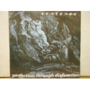 "PERFECTION THROUGH DISFUNCTION - 7"" ITALY"
