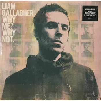 WHY ME?WHY NOT. - 180 GRAM