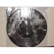 EDUCATED HORSES - PICTURE DISC