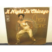 A NIGHT IN CHICAGO / YOU LOVE ME IN A SPECIAL WAY