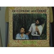 DI COMUNE ACCORDO - LP ITALY