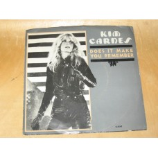 """DOES IT MAKE YOU REMEMBER / TAKE IT ON THE CHIN - 7"""" USA"""